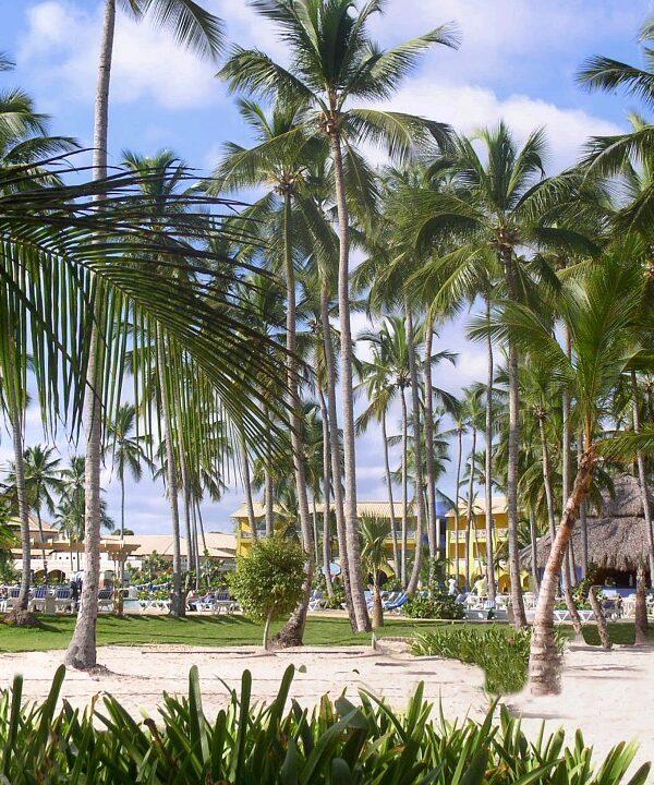 oferte republica dominicana
